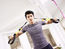 Young asian adult working out in gym. Young asian man exercising in gym using fitness straps Stock Photo