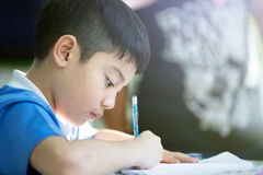 Young asian boy doing his homework. Young asian boy is doing his homework Royalty Free Stock Photography