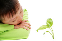 Young asian boy watching green plants grow. Studio shot of young asian boy watching green plants grow. Isolated on white. Shallow DOF. Focus on the leaves in Royalty Free Stock Photography