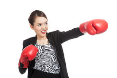 Young Asian business woman with red boxing gloves Royalty Free Stock Photos