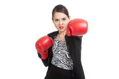 Young Asian business woman with red boxing gloves Stock Images