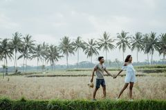 Couple stylish walking in rice field together royalty free stock photos