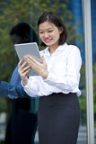 Young Asian female executive using tablet Royalty Free Stock Photos