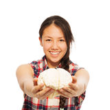 Young Asian girl holds cerebrum model in her hand. Young smiling Asian girl holding cerebrum model in her hand, isolated on white background stock images