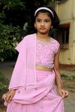 Young Asian girl in pink sari Stock Image