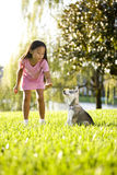 Young Asian Girl Training Puppy To Sit Stock Photography