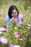 Young Asian lady smell flowers at meadows Royalty Free Stock Photo