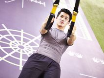 Young asian adult working out in gym. Young asian man exercising in gym using fitness straps Stock Image