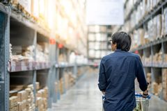 Young Asian man shopping with trolley cart in warehouse. Young Asian happy man using trolley cart putting product inside. Shopping furniture in warehouse Stock Photography