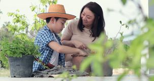 Young asian mother with her boy prepare black soil to little plant on in the garden. Earth day concept stock video