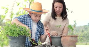 Young asian mother with her boy prepare black soil to little plant on in the garden. Earth day concept stock video footage