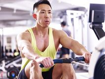 Young asian man working out using rowing machine royalty free stock photo