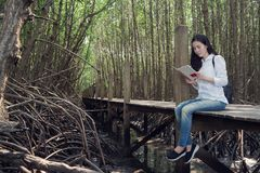 Young asian woman in blue jean and white shirt reading book on w. Ooden walkway at public mangrove forest inThailand. view from side woman Royalty Free Stock Photos