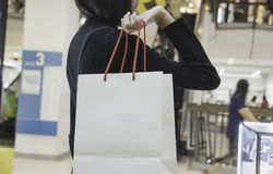 Young Asian woman holding shopping bag in shopping mall. Shopping concept stock image
