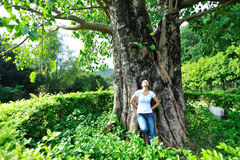 Young woman and lime tree Stock Images