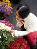 Young asian woman looking at flowers at store Royalty Free Stock Photography