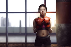 Young asian woman posing with boxing gloves in her chest Stock Images