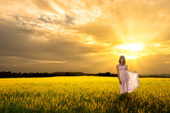 Young asian woman standing in meadows Stock Images