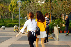 Young asian woman touring in Shenzhen Bay Royalty Free Stock Photography