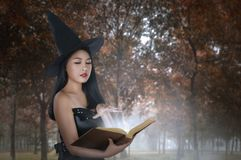 Young asian woman in witches costume holding spell book. On the forest Royalty Free Stock Photos