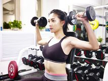 Young asian woman exercising working out in gym. Young asian woman working out exercising in gym using dumbbells Royalty Free Stock Photography