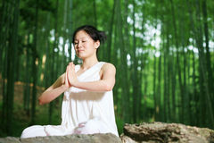 Young asian women doing YOGA Royalty Free Stock Image