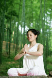 Young asian women doing YOGA Royalty Free Stock Photos