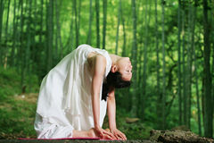 Free Young Asian Women Doing YOGA Royalty Free Stock Photos - 9677978