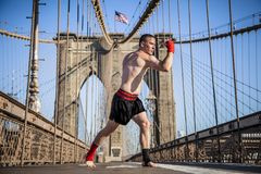 Young athlete fighter exercising on Brooklyn bridge stock photo