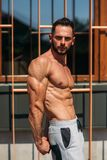 Young athlete posing with a torso for photography on a brick wall background. Bodybuilder, athlete with pumped muscles stock images