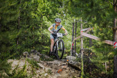 Young athlete rides a Bicycle on rocks in spruce forest Stock Photography