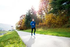 Young athlete running in park in colorful autumn nature. Young athlete in blue jacket running outside in colorful sunny autumn nature. Trail runner training for Stock Photos