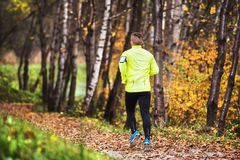 Young athlete with smartphone running in park in autumn. Royalty Free Stock Images