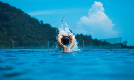 Young athlete swimming in the ocean. Young, fit athlete swimming in the ocean Royalty Free Stock Images