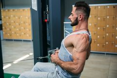 A young athlete trains in the gym. Shows the muscles of the back and chest Stock Image