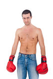 Young athlete wearing boxe gloves Royalty Free Stock Images