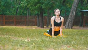 Young Athlete Woman in Sport Outfit Engaged Practicing Yoga Lying on a Carpet in a Park on a Green Lawn stock video