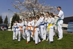 Young athletes of judo Stock Photos