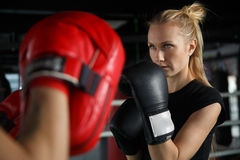 Young athletes trains in boxing Stock Photography