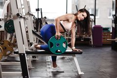 Young athletic brunette girl dressed in a sportswear is doing exercises with plate on the bench in the modern gym royalty free stock images