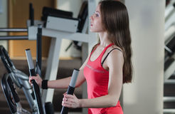 Young athletic girl in the gym Royalty Free Stock Image