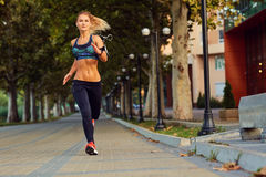 Young athletic girl runner jogging in park in  summer autumn Royalty Free Stock Photography