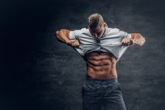 Young athletic male shows six pack ABS. Young athletic male in white shirt shows six pack ABS royalty free stock images