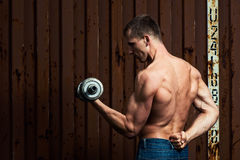 Young athletic man doing workout with heavy dumbbell Stock Photo