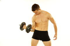 Young Athletic Man Exercises With Dumbbell Biceps Muscle Stock Photo