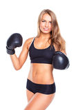 Young athletic woman in boxing gloves on a white Stock Images