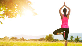 Young athletic woman practicing yoga on a meadow at sunset Royalty Free Stock Photos