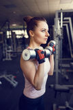 Young athletic woman training with dumbbell in gym Royalty Free Stock Images
