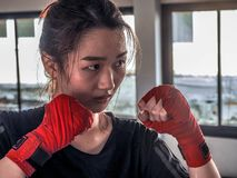 Young attractive asian woman with boxing gloves are ready for battle royalty free stock photography