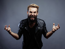 Young attractive bearded hipster man gesturing Stock Photos